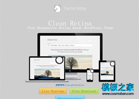 Clean Retina wordpress汉化主题下载