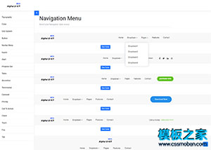 Alpha UI Kit bootstrap 前端框架模板
