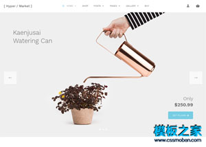 Hypermarket WordPress Theme Lite版下載(zai)