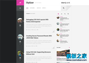 Stylizer程序員技術博客日志WordPress主題